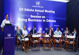 'Doing Business in Odisha' seminar by CII